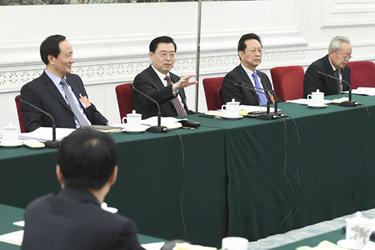 張德江參加寧夏代表團審議