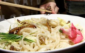 日本餐館昆蟲變美食