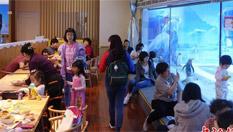 北京企鵝餐廳童趣盎然 生意火爆
