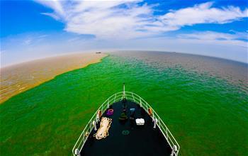 鳥瞰黃河入海的地方