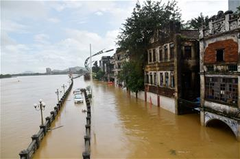 廣東陽春部分街道房屋被洪水浸泡