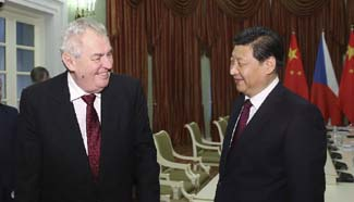 Chinese, Czech presidents meet in Sochi