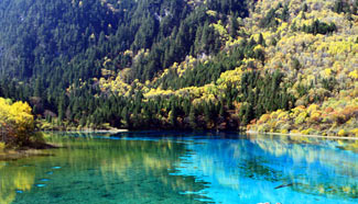 Enchanting autumn scenery of Jiuzhaigou