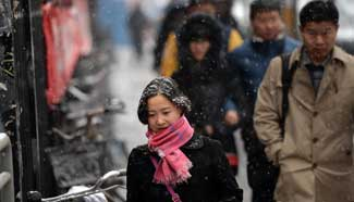 Beijing greets snowfall after Spring Festival Holiday