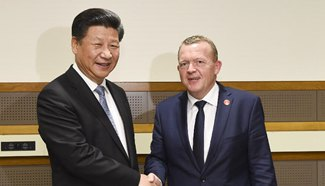 Chinese president calls for closer cooperation with Denmark