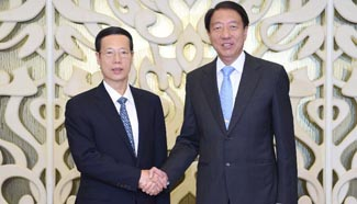 Chinese vice premier visits Singapore to promote ties