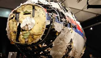 MH17 hit by Buk missile system: Dutch Safety Board