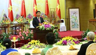 Xi Jinping, Peng Liyuan attend welcome banquet in Vietnam