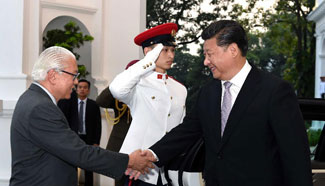 China, Singapore resolute in shaping closer, customized partnership