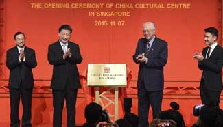 Xi attends opening ceremony of China Cultural Center in Singapore