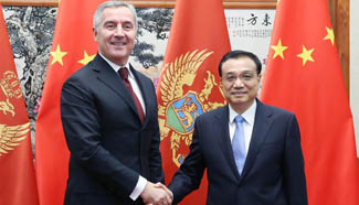Chinese premier meets Montenegro PM on ties