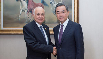 Chinese FM meets Arab League Secretary-General in Doha