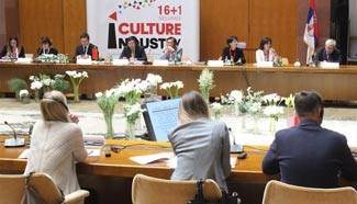 1st China-CEE CCI Forum opens in Serbia