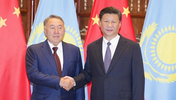 China, Kazakhstan expect G20 summit to chart course for world economy