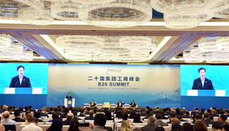 B20 summit concludes in Hangzhou