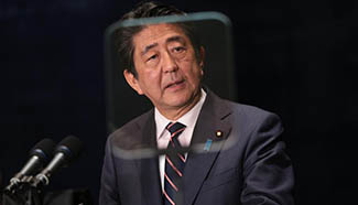 Japanese PM attends press conference after G20 summit