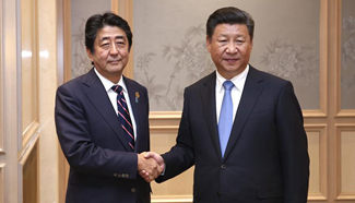 Xi expects China-Japan ties back on normal track