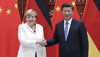 China, Germany to work together for successful G20 Hamburg summit