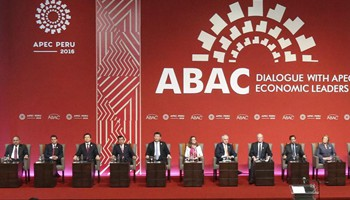 Xi holds dialogue with representatives of APEC Business Advisory Council in Lima