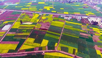 In pics: rural scenery of Macaodi Village in SW China's Yunnan