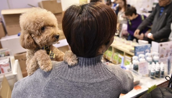 12th Pet Show kicks off in Hong Kong