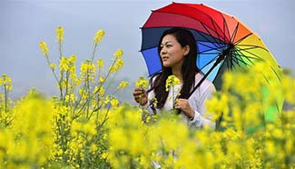 Tourists pose for photos among cole flowers in E China
