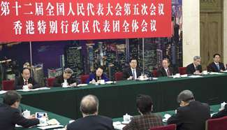 Chinese leaders join panel discussions with NPC deputies