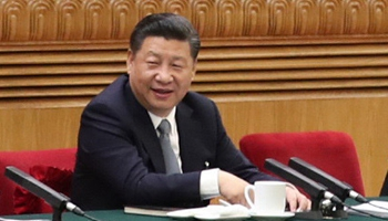 Real economy crucial for development of NE province: Xi