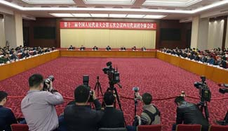 Plenary meeting of 12th NPC deputies from Sichuan opens to media
