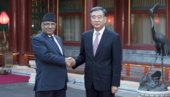 Chinese vice premier meets Nepal's PM in Beijing