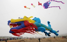 Kite competition held at Weifang in E China's Shandong