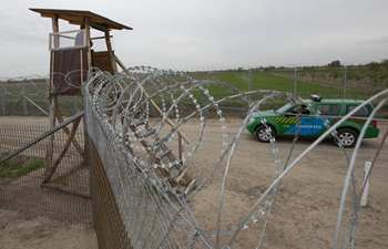 Second fence is ready at Hungarian-Serbian border: minister