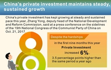 Graphics: China's private investment growth in first 9 months of 2017