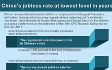 Graphics: China's jobless rate at low level in past 5 years