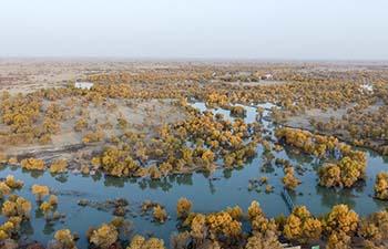 Scenery of Daxihaizi Reservoir on Tarim River in Xinjiang