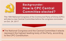 Graphics: how 19th CPC National Congress elects new Central Committee