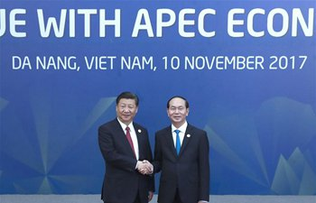 Xi attends dialogue with representatives of APEC Business Advisory Council in Vietnam