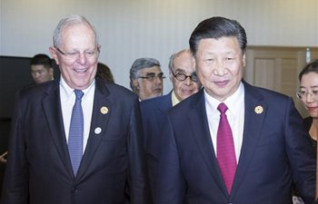 Xi meets with Peruvian counterpart on sideline of APEC CEO Summit