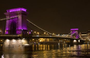 World Prematurity Day marked in Budapest