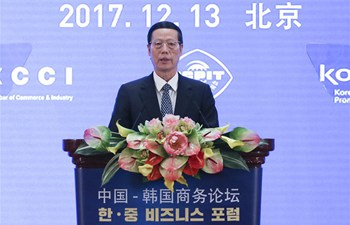 Chinese vice premier, ROK president address China-ROK business forum
