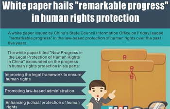 "China Focus: White paper hails ""remarkable progress"" in human rights  protection"