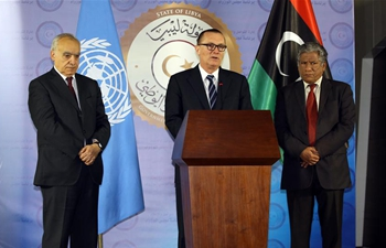 UN highlights election as cornerstone of stability in Libya