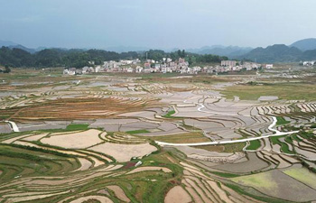 Scenery of terraced fields after rain in Baping Village, south China