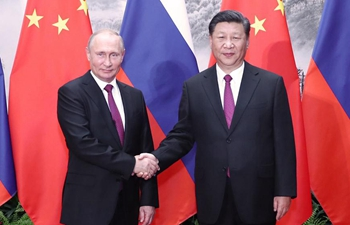 Xi, Putin agree to promote greater development of China-Russia  ties at high level