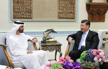 Chinese president meets Crown Prince of Abu Dhabi on China-UAE ties