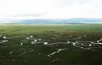 Scenery of Awancang Wetland in Gannan Tibetan Autonomous Prefecture