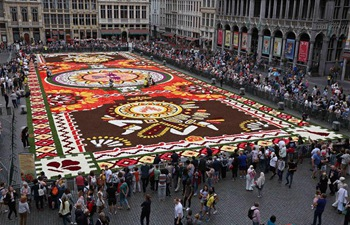 In pics: Flower Carpet at Grand Place in Brussels, Belgium