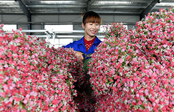 Artificial flowers workshop helps locals get rid of poverty in China's Ningxia