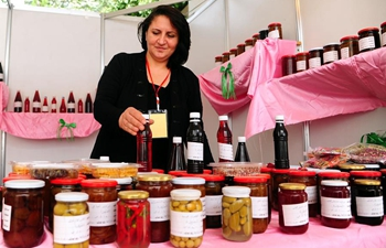 Homemade food industry festival held in Damascus, Syria