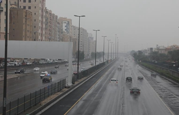 Kuwait suspends work to cope with unstable weather conditions